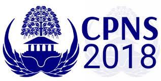 Pengumuman Penetapan Hasil SKD Seleksi CPNS Kabupaten Pringsewu Tahun 2018